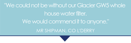 The Glacier Water Systems GW5 8x19 whole house water filter is highly recommended.